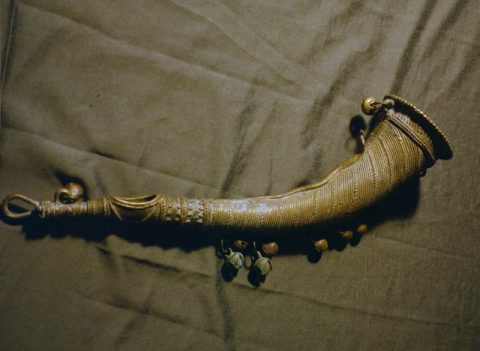 Central Indian horn