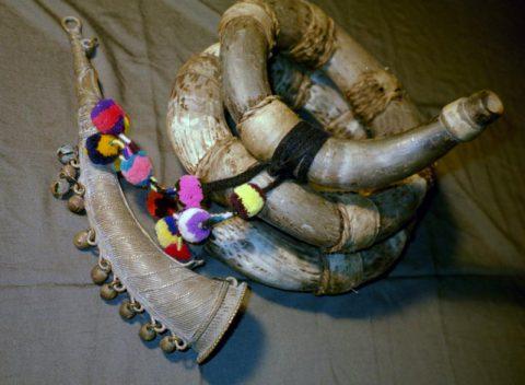 Peruvian Vagra Puku